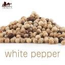 ホワイトペッパーホール White Pepper Whole 【100g 袋入り】 / コショウ インド スパイス カレー アジアン食品 エス…