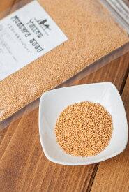 イエロー マスタード シード Yellow Mustard Seed 【100gパック】 / TIRAKITA お買い得 お試し 食品 食材 アジアン食品 エスニック食材