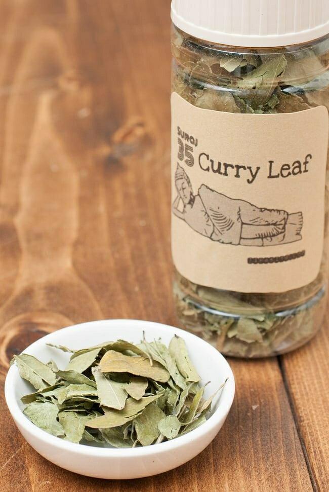 カレーリーフ Curry Leaves 【10gボトル】 / スパイス インド ガラムマサラ あす楽