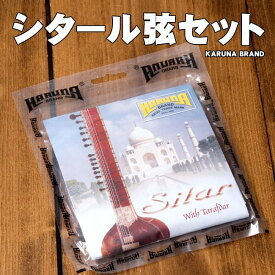 Karuna Brand シタール弦セット / 交換弦 予備 SITAR レビューでタイカレープレゼント あす楽