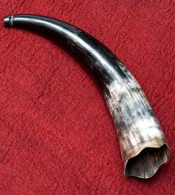 【送料無料】 ベトナム水牛のホーン / 楽器 角 子供 民族楽器 インド楽器 エスニック楽器 ヒーリング楽器