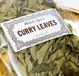 カレーリーフ Curry Leaves 【10g袋入】(curry patta) / 南インド料理 アスパック スパイス アジアン食品 エスニック食材