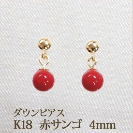 K18 赤サンゴ 赤珊瑚 ピアス (4mm) ダウン  優しい色合い! レッド 珊瑚 コーラル サンゴ 18K 18金