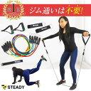 【1位獲得】トレーニングチューブ 強度別5本セット 日本語トレーニング動画・収納ポーチ付 [メーカー1年保証] STEADY(…