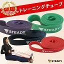 【1位獲得】トレーニングチューブ 強度別4本セット 日本語トレーニング動画付 [メーカー1年保証] STEADY(ステディ) ST…