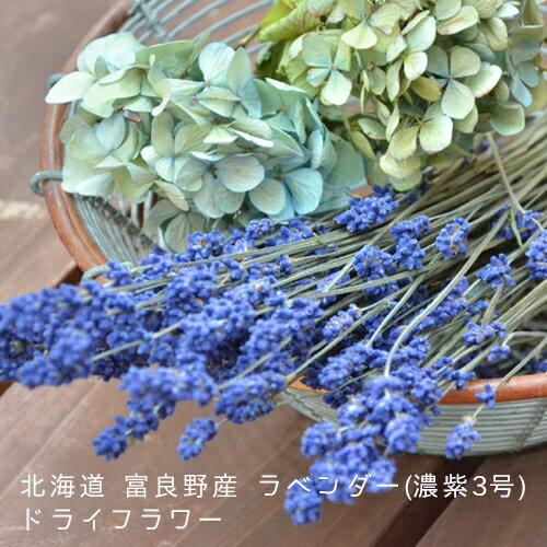 北海道 富良野産【濃紫】ラベンダードライフラワー100g 濃紫3号 花束 ハンドメイド クラフト 花材 素材 ハーバリウム