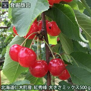 【予約受付中】北海道 仁木町産【紅秀峰】500g さくらんぼ 大きさミックス送料無料