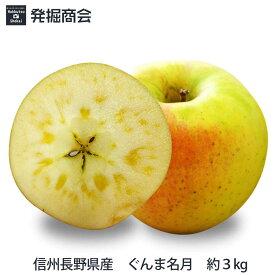 【予約受付中】信州 長野県産 ぐんま名月 約3kg2019年度収穫 りんご 【送料無料】