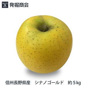 信州 長野県産 シナノゴールド 約5kg2020年度収穫 りんご