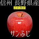 信州 長野県産 サンふじ 約3kg2017年度収穫 りんご 【送料無料】