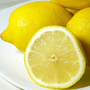 レモン 中玉  アメリカ・チリ産 約5kg 中玉 42個入り 外国産 黄色いレモン【140】