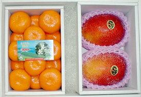 送料無料 宮崎マンゴー「太陽のタマゴ」特大 4Lサイズ2個入り&ハウスみかん Sサイズ 1kg 化粧箱 令和元年母の日 夏 果物セット