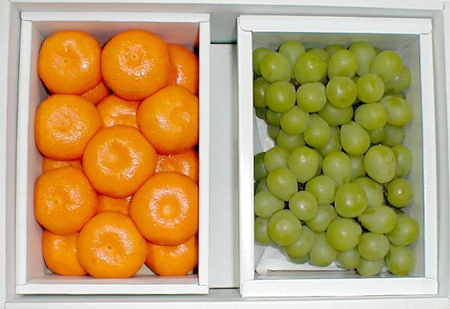 【送料無料!】ハウスミカン1kg・岡山特産マスカット・オブ・アレキサンドリアぶどう1kgセット 化粧箱 父の日 フルーツギフト●ご贈答おすすめ果物です美しくて美味な夏のフルーツギフト