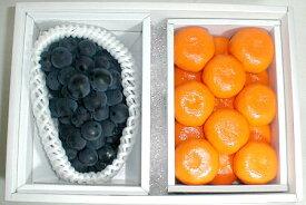 果物セット【送料無料】ハウスミカン Sサイズ 約1kg・種無し ピオーネぶどう セット化粧箱●ご贈答おすすめ果物です夏 フルーツセット ギフト プレゼント