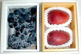 果物セット 宮崎 完熟マンゴー 大玉 3Lサイズ2個・「種無し」ピオーネぶどう セット化粧箱 ●ご贈答おすすめ果物です|宮崎みやげ 父の日 フルーツギフト プレゼント お中元 果物