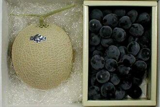 """溫室公畝哈密瓜1.5kg、""""有籽,""""并且作為巨峰(kyoho)葡萄1kg化妝盒●贈答推薦的水果的高級的哈密瓜和大顆粒葡萄。夏天禮物安排♪02P27May16"""