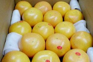 フロリダ グレープフルーツ 大玉 15個入り(赤肉9個)&(白肉6個)セット アメリカ産甘味さがちがう本場フロリダ産です!