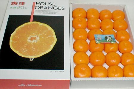 佐賀産 唐津 ハウスミカンMサイズ 24個入り化粧箱○ご贈答おすすめ果物ですオレンジ色も美しい甘露したたる食味のいいハウスみかんです♪ ハウスみかん