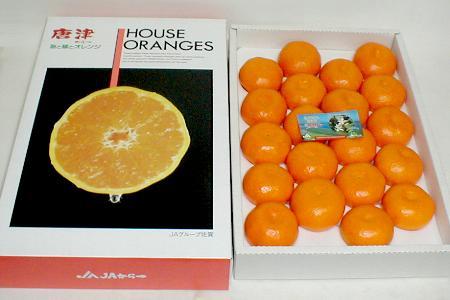佐賀産 唐津 ハウスミカンLサイズ 20個入り化粧箱○ご贈答おすすめ果物ですオレンジ色も美しい甘露したたる食味の良いハウスみかんです♪