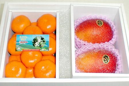 【送料無料】完熟マンゴー『太陽のタマゴ』大玉 3Lサイズ 2個入り 宮崎産&ハウスミカン 1kg セット 化粧箱  「夏」の高級フルーツの組み合わせです 太陽のたまご 贈答 フルーツギフト 父の日P01Jul16