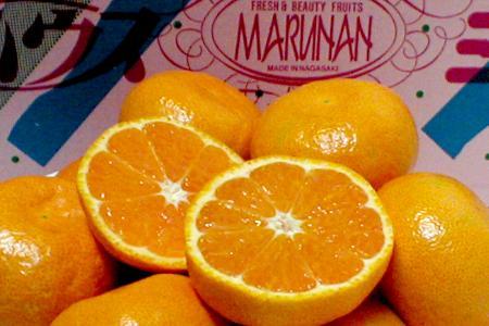 長崎産 「まるなん」ハウスみかんSサイズ 2.5kg(36個前後入り)●店長おすすめ果物です味にこだわる産地の酸味の薄い甘いハウスミカンです。 02P13jul10