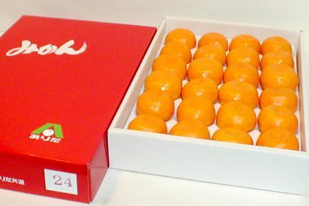 和歌山産 ハウスみかんMサイズ 24個入り化粧箱●ご贈答おすすめ果物です食べやすくて甘いハウスミカンは、冷やすとさらに美味しい夏の果実です 有田