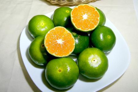 宮崎産 グリーン ハウスミカンSサイズ 5kg(70個前後入り)酸味と甘味がバランスよくミックスした爽やか蜜柑です♪ 緑 温室みかん 02P23Aug15