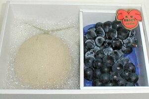 果物セット アールスメロン (マスクメロン)・ 種無し ピオーネぶどう セット化粧箱○ご贈答おすすめです高級メロン と 大粒ブドウ フルーツギフト セットです