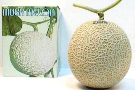 アールスメロン(マスクメロン)大玉2個入り化粧箱(1.5kg/1個)ご贈答おすすめ果物です「お見舞い」や「お祝い」に最適な美しいネットの高級メロンです