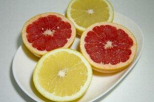 グレープフルーツ セット 大玉 15個入り(白肉9個・赤肉6個) 南アフリカ産酸味がある柑橘 暑い夏に格別美味しい♪爽やか風味【ラッキーシール対応】