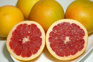 南アフリカ産 グレープフルーツ(赤肉)35個入り爽やかな香りと風味が楽しめます♪