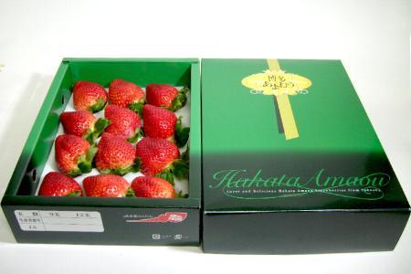 福岡産 博多 あまおうイチゴ(大粒12個入り)化粧箱赤く大きくとても濃い甘味のいちご。希少品の為お届け日の指定はいただけません。不都合日があればお知らせください (ストロベリー/あまおういちご/いちご)【楽ギフ_包装選択/のし宛書/メッセ】P27Mar15