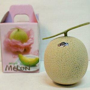 マスクメロン 1玉 約1.5kg(白級) 化粧箱 静岡産  母の日 ギフト /フルーツ/温室メロン/アールスメロン