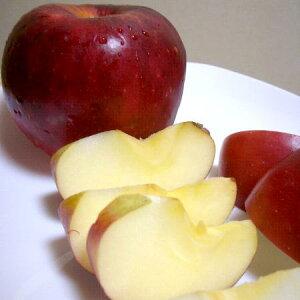 【お試し!送料無料】紅玉リンゴ(こうぎょくりんご)約1.3kg 小玉 6個入り 青森・長野産?コウギョク べにたま 林檎 アップル パイ ジュース ジャム ケーキ 46サイズ【ラッキーシール対応】