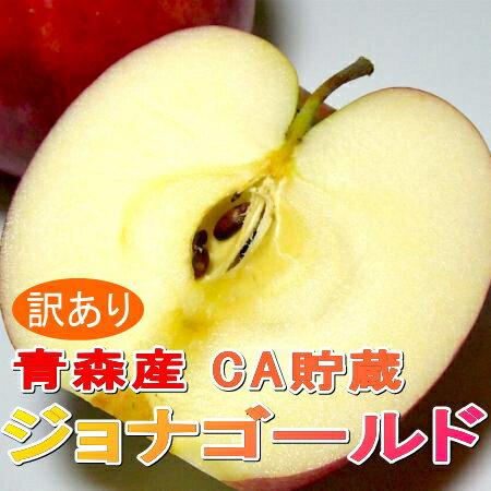 【送料無料】りんご ジョナゴールド 青森産5kg サイズはお任せです(16〜23個入り)「CA貯蔵りんご」甘みと酸味がバランスいいリンゴ ちょっとキズがあるなど「訳あり」です。