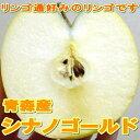 「訳あり」シナノゴールドリンゴ 【送料無料】5kg 14〜23個前後入り 青森産黄色いりんご ですが身がシャキッ としてとても ジューシー な 甘いリンゴ です...