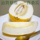 真桑瓜 (まくわうり)約5kg 10〜12個前後入り  滋賀産瓜という名の懐かしい水菓子が マクワウリ です。希少品のためお届け日はご…