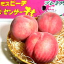 桃(もも)ミスピーチ 約5kg 大玉 15〜16個入り 福島産
