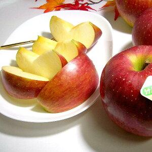 長野産 シナノスイートりんご 約10kg 特大 20〜26個入り 店長おすすめ果物です ?信州りんご リンゴ アップル 林檎 大きなリンゴ 信濃スイート シナノスィート