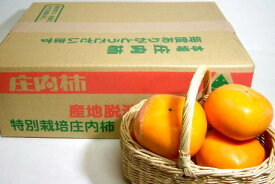 山形産 庄内柿(しょうないかき)約5kg 大玉 24個前後入り|カキ たねなし柿 平核無柿