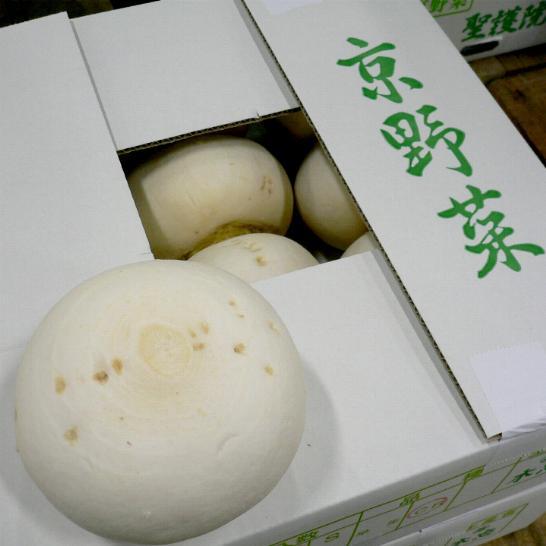 「京野菜」 聖護院かぶ (しょうごいんかぶ) 2Lサイズ 4玉 京都産【ラッキーシール対応】