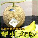 京都産 あみの琴引メロン (ことびきメロン)大玉 2Lサイズ2個入り●店長おすすめ果物です【糖度15度以上】 黄金…