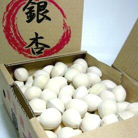 愛知産 銀杏 (ぎんなん)2Lサイズ 約500g(100個前後入り)|秋の風物詩 土瓶蒸し 茶碗蒸し イチョウ
