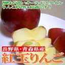 青森・長野産 紅玉リンゴ(こうぎょくりんご)10kg 中玉36〜40個入り●店長おすすめ果物です懐かしい甘酸っぱいリンゴです♪色が変わりにくいのでリンゴ料理にも...