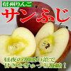 """長野 [聖紅富士蘋果""""10 公斤 (超級球 20 到 24 枚) [經理推薦水果],信州高原林戈是摘""""蘋果""""是品味。 特大型 [P06Dec14] 紅富士蘋果 / 紅富士蘋果 / 蘋果"""