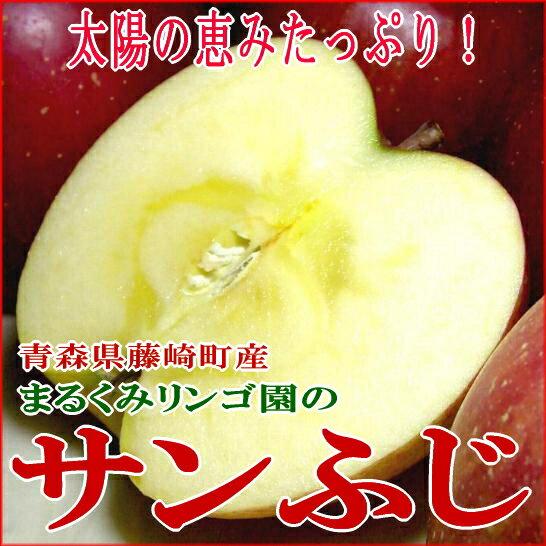 送料無料 訳あり まるくみりんご園のサンふじりんご青森県藤崎町 約5kg 小玉 23個入り[有機肥料100%・減農薬栽培採用]太陽の恵をいっぱい浴びた林檎です(お試し/送料0円)