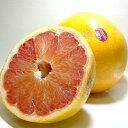 アメリカ・フロリダ産 グレープフルーツ (赤肉)大玉12個入り甘い味が自慢のフロリダ産です!