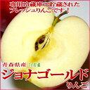 青森産 ジョナゴールドリンゴ(CA貯蔵りんご)5kg 中玉18〜20個入り甘みと酸味がバランスいいリンゴです ジョナゴールド