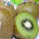 ニュージーランド産 キウイフルーツ グリーンキウイ 約3.6kg 30個入り ゼスプリ|緑肉 ビタミン補給