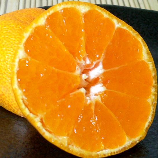 和歌山産 有田 ハウスみかんSサイズ 1kg化粧箱●ご贈答おすすめ果物です